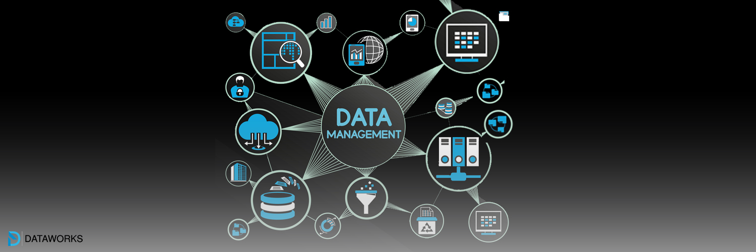 Tips on successful data management services